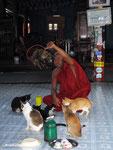 """""""Jumping Cats"""": Wurde damals im Lonely Planet als DIE Touristenattraktion angepriesen!"""