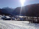 12 Pignia im Winter