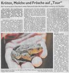 """21 Kröten, Molche und Frösch auf """"Tour"""""""