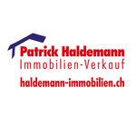 Patrick Haldemann, Immobilien