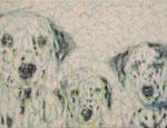 「presense Ⅲ」アクリル絵具 キャンバス 32×41cm 2015年