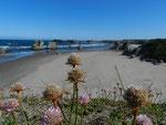 Bandon - Pacific Coast Oregon by Ralf Mayer