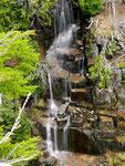 Mount Rainier National Park - Washington State by Ralf Mayer