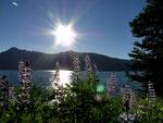 Jackson Lake - Grand Teton Nationalpark - Wyoming by Ralf Mayer