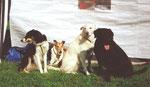 1998 Turnier in Reisdorf