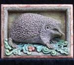 Riccio - Hedgehog