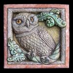 Civetta - Owl