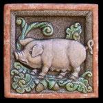 Maialino . Pig