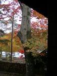 秋色のハーモニー