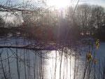 Stausee, Winter 2012