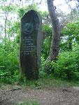 Gedenkstein, Fritz v. Wille Grab