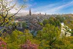 Stadt Bern aufgenommen im Rosengarten