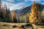 Nr. 13 Zernez Nationalpark