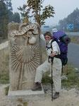 der Jakobsweg nach 730 km brachte mir keine Klarheit wie es beruflich weitergeht ...