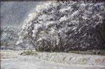 15 佐久間良一 雪降る日 90×60