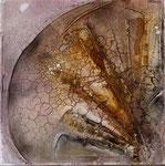 Symphonie, 40 x 40 cm,  Preis auf Anfrage