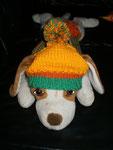 Hundemütze zum binden und freien Ohren (out)