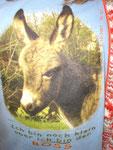 Mal wieder ein Eselshirt von Mirjam :-)