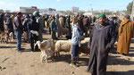 Vente de moutons