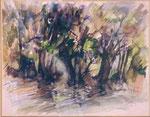 Corse    Sous bois               aquarelle     60x80