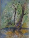 Le vieil arbre                          pastel            45x54