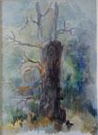Le châtaignier mort                 aquarelle  66x82