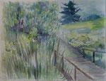 Frisson dans les herbes   Aquarelle  78 x 63