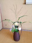秋の七草 すすき、しゅうめい菊(貴船菊)、われもこう、かっこうあざみ(うす紫)、桔梗、金水引、水引
