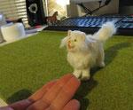 Komm auf meine Hand, Kleines