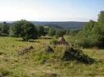 Der Stegskopf; die letzte, weite natürliche Landschaft des Westerwaldes