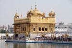 Amritsar, tempio d'oro Sikh