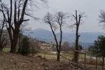 Verso il Monte Brè ed il Monte Boglia