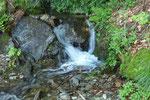... tanta acqua sul percorso ...