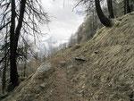 Sul sentiero per l'Alpe di Negrös