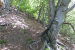 A circa 850 m alcuni bollini e frecce rosse segnalano il sentiero ma solo per un breve tratto