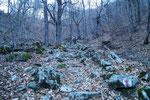 Sentiero per Terra Vecchia