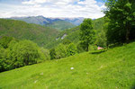 Alpe di Arogno 1084 m