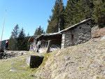Alpe Stabiello - Lumino 1515 m