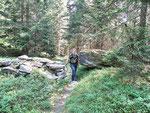 Nel bosco prima dell'Alpe di Marcri