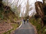 Saliamo al Monte Caslano