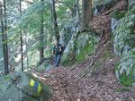 Sentiero Loga - Lumino (Bassa)