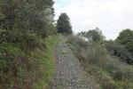 Sentiero per il Monte Tamaro