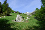 Alp de Pindeira 1534 m