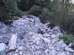 Sentiero per l'Alp de Balnisc