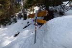 Arrivati a Fornace 1580 m, dove incontriamo il sentiero che abbiamo percorso questa mattina