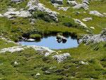 Laghetto dell'Alpe di Laveggia 2170 m
