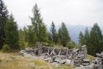 Alpe Lombardone 1588 m