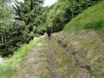 Sentiero Arbinetto - Sasso Guidà