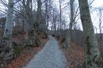 Sul sentiero per la Capanna Pairolo