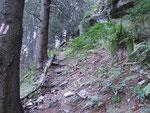 Sentiero Ghifa 1267 m - Alp de Balnisc